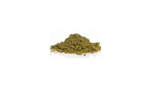PIGMENT - Vert olive
