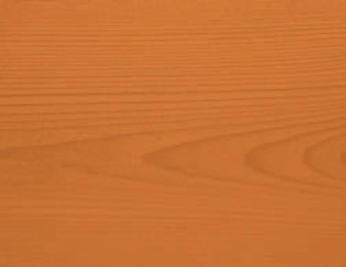 Orange - 02