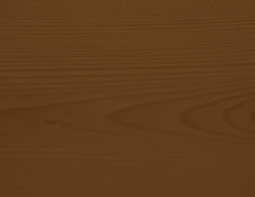 Terre d'ombre - 33