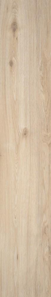 Chêne de marais blanchi