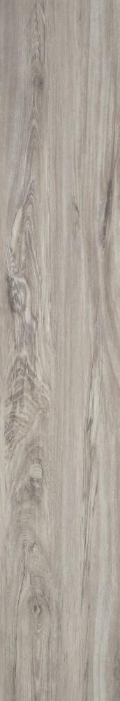 Chêne de marais chaux gris